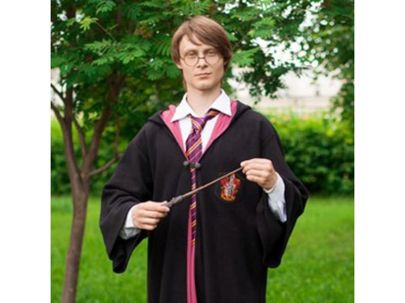 Гарри поттер детский праздник детский праздник с домовенком кузей